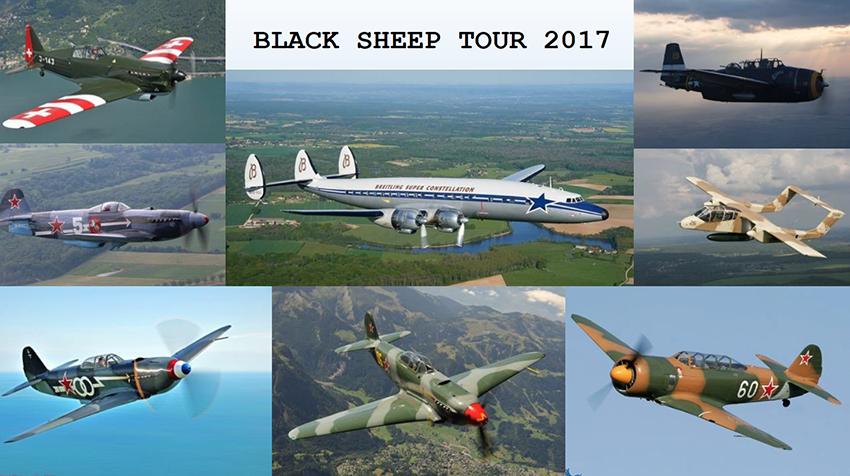 sheeptour